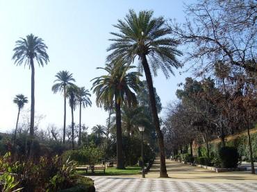 Jardines de Murillo Siviglia